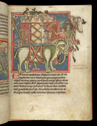 The Elephant, In A Bestiary f.8r